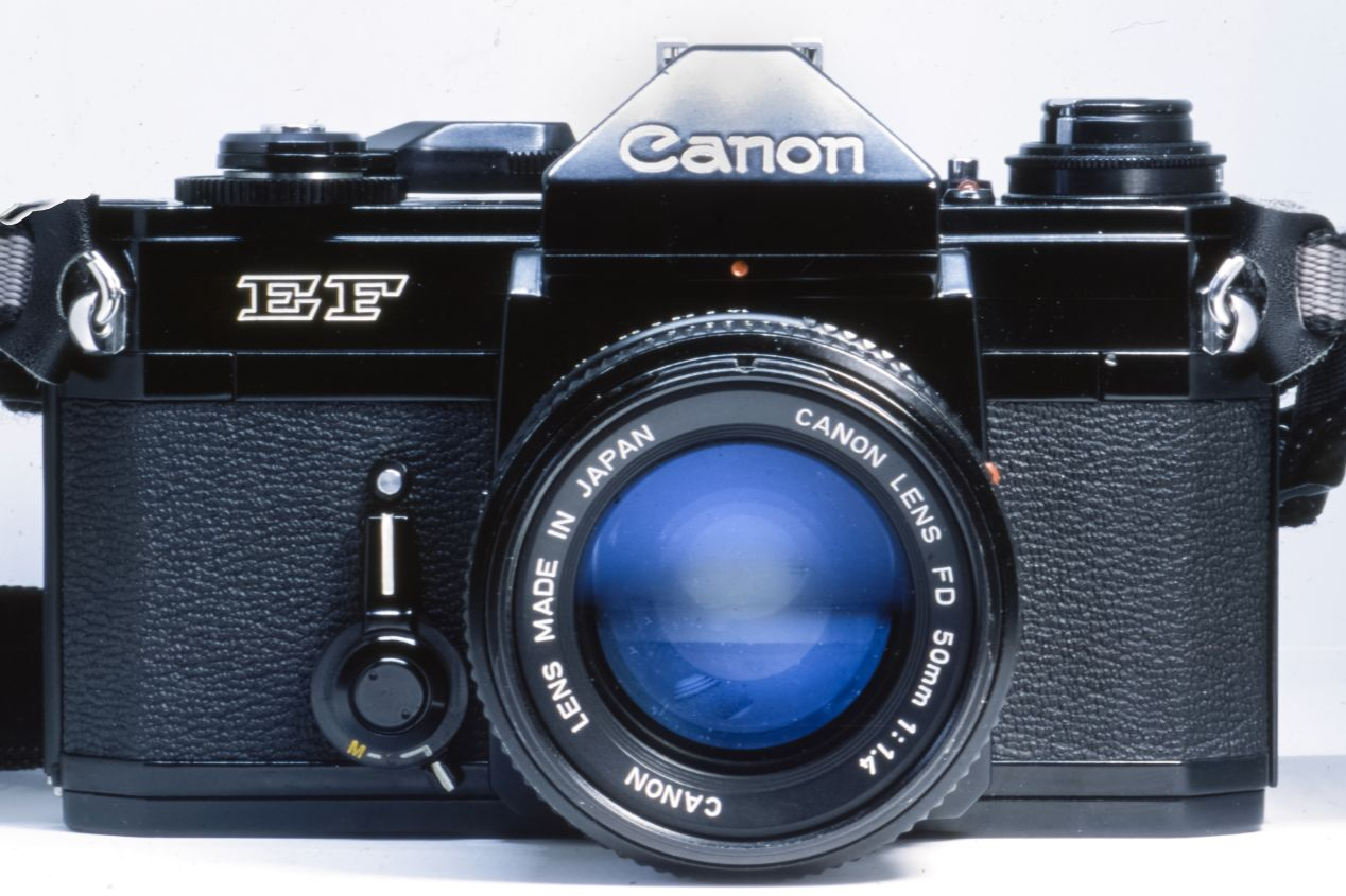The Canon EF camera with an NFD 50 mm f./1.4 lens. This image is the result of a focus stack carried out in post-production with 3 images taken on Fujichrome Provia 100 F. Focus was shifted manually during picture taking, using a Nikon F5 and a Macro Tokina AF 100 mm f./2.8.