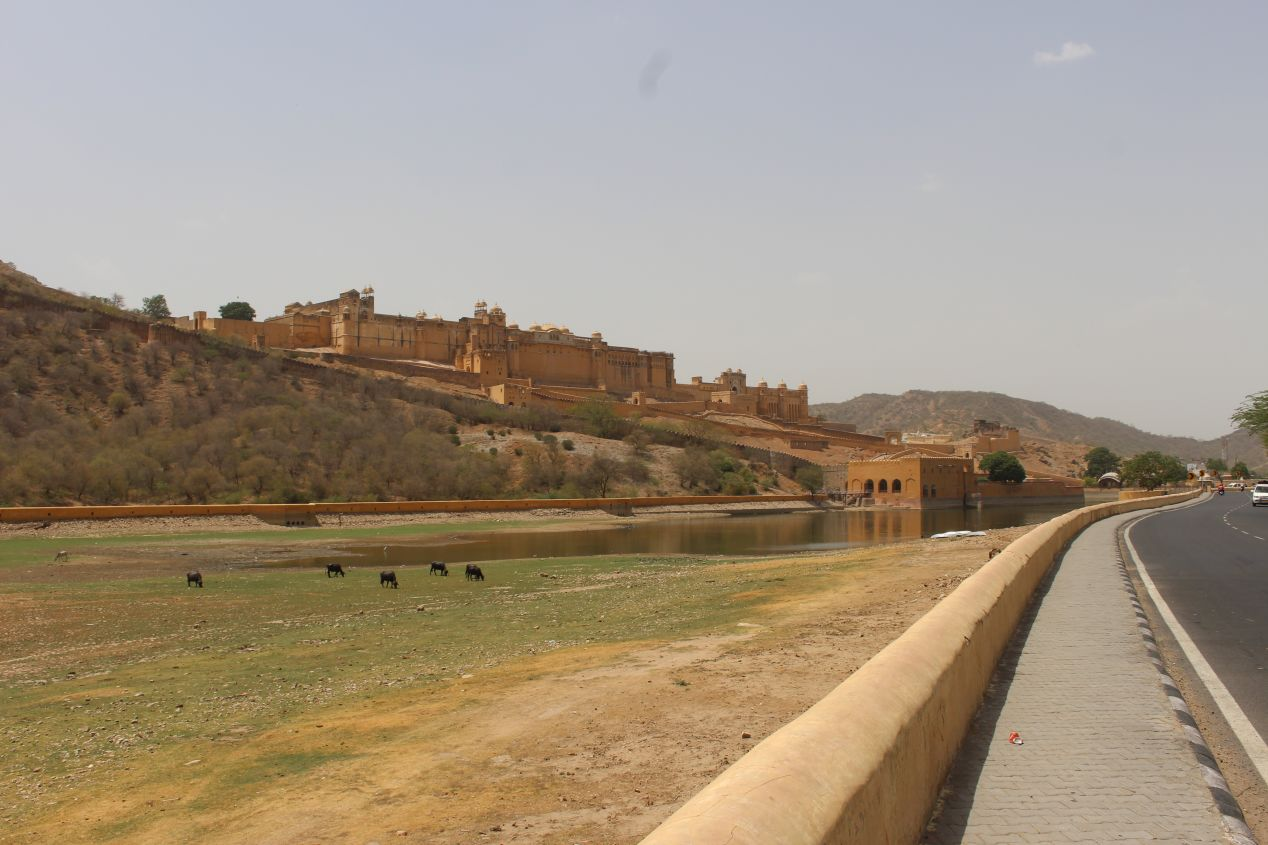 A photo taken during the long, hot walk to the historical fort in Jaipur. Shot on Canon T5i.