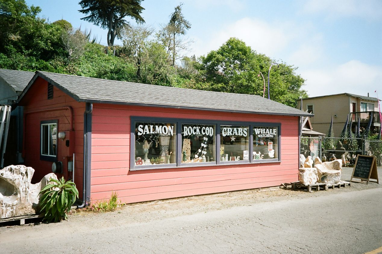 Fishing Supply Store, Noyo Harbor, California.  Olympus mju-II, Kodak Portra 400.