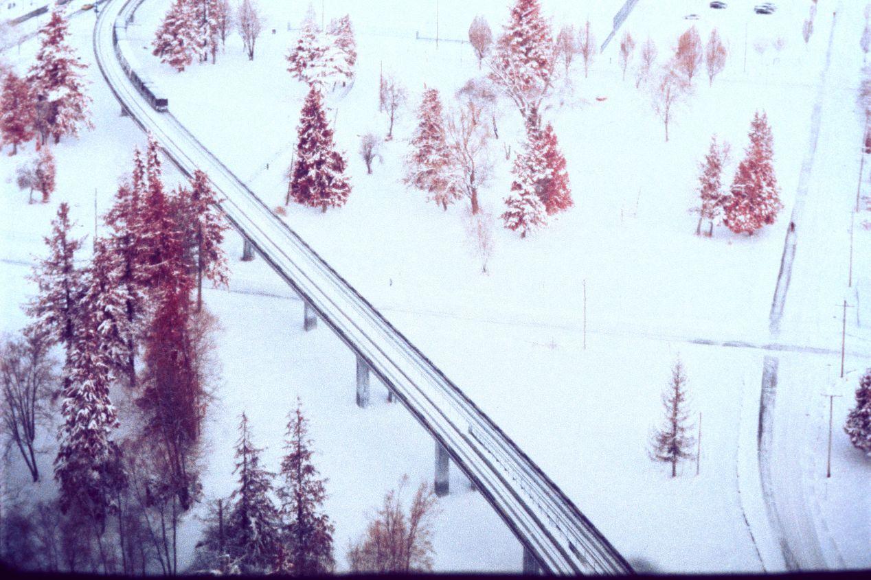 Kodak Aerochrome makes vegetation appear red.