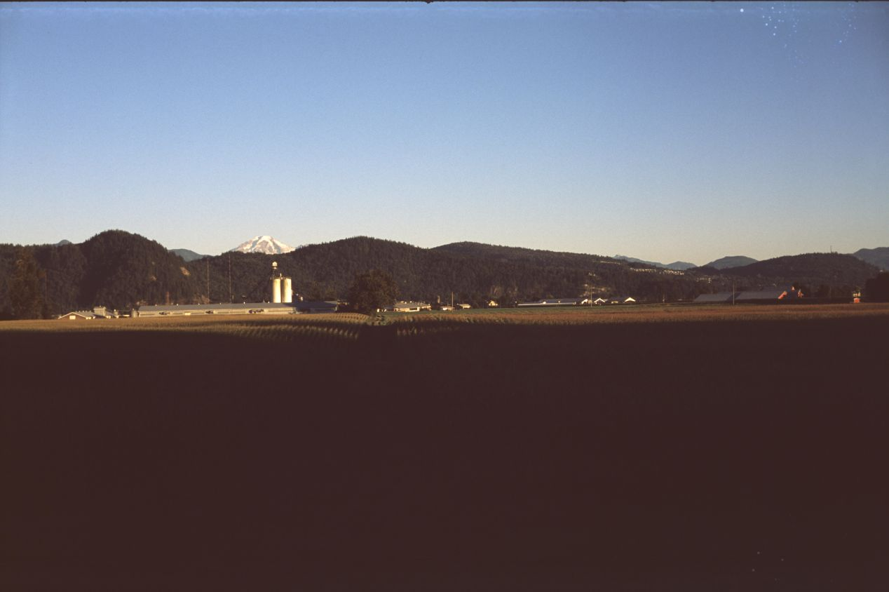 Though sunsets are typically a safe bet when it comes to slide film, your shadows may still get crushed on Provia 400F. Never as ugly as digital artifacts, but still missing information. Note that when this image was uploaded, the JPEG compression added some distortions in its lower section, which are not part of the film scan.