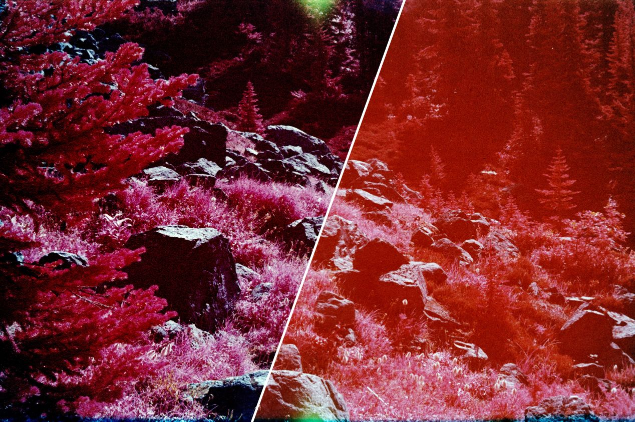 Kodak Aerochrome with some sun glaring. Left: removed in post, right: straight from the scanner.