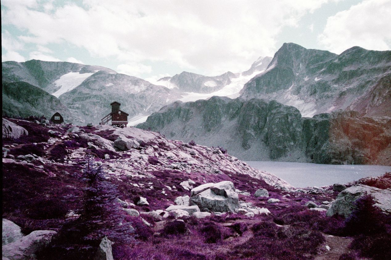 """Lomochrome Purple at EI 200. Originally posted in """"Shooting Kodak Aerochrome vs. Lomochrome Purple,"""" I'm considering entering it into one of the Lomography's award competitions, below."""