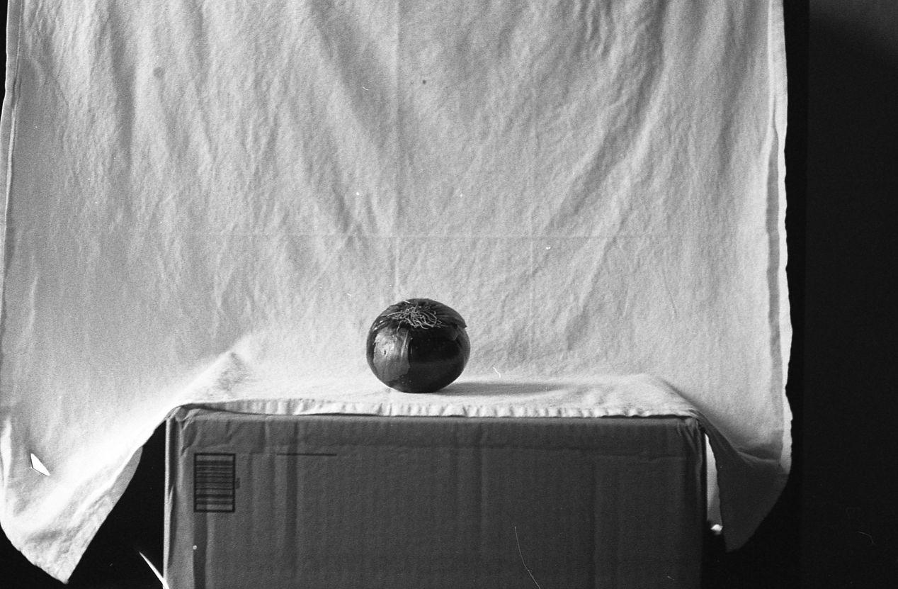 Un oignon. Appleton, Wisconsin. FED 2. Kodak 400TX.