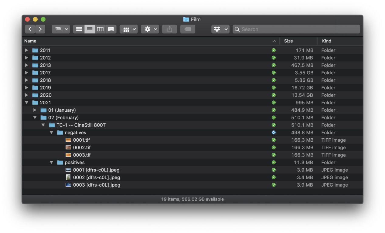 Film scan file organizational pattern.