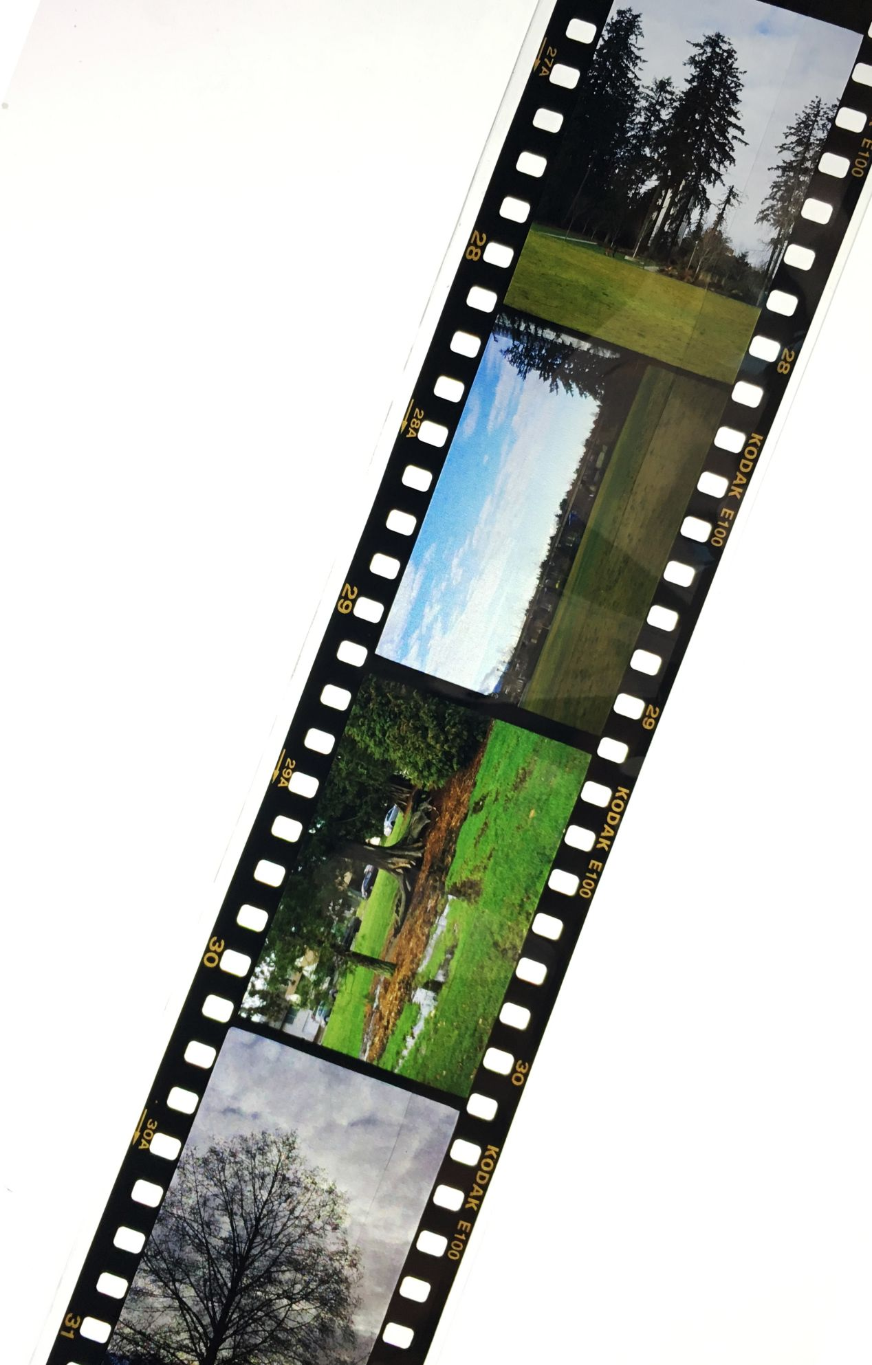 Slide film can be viewed as a complete picture with non-reversed colours without having to be printed or scanned.