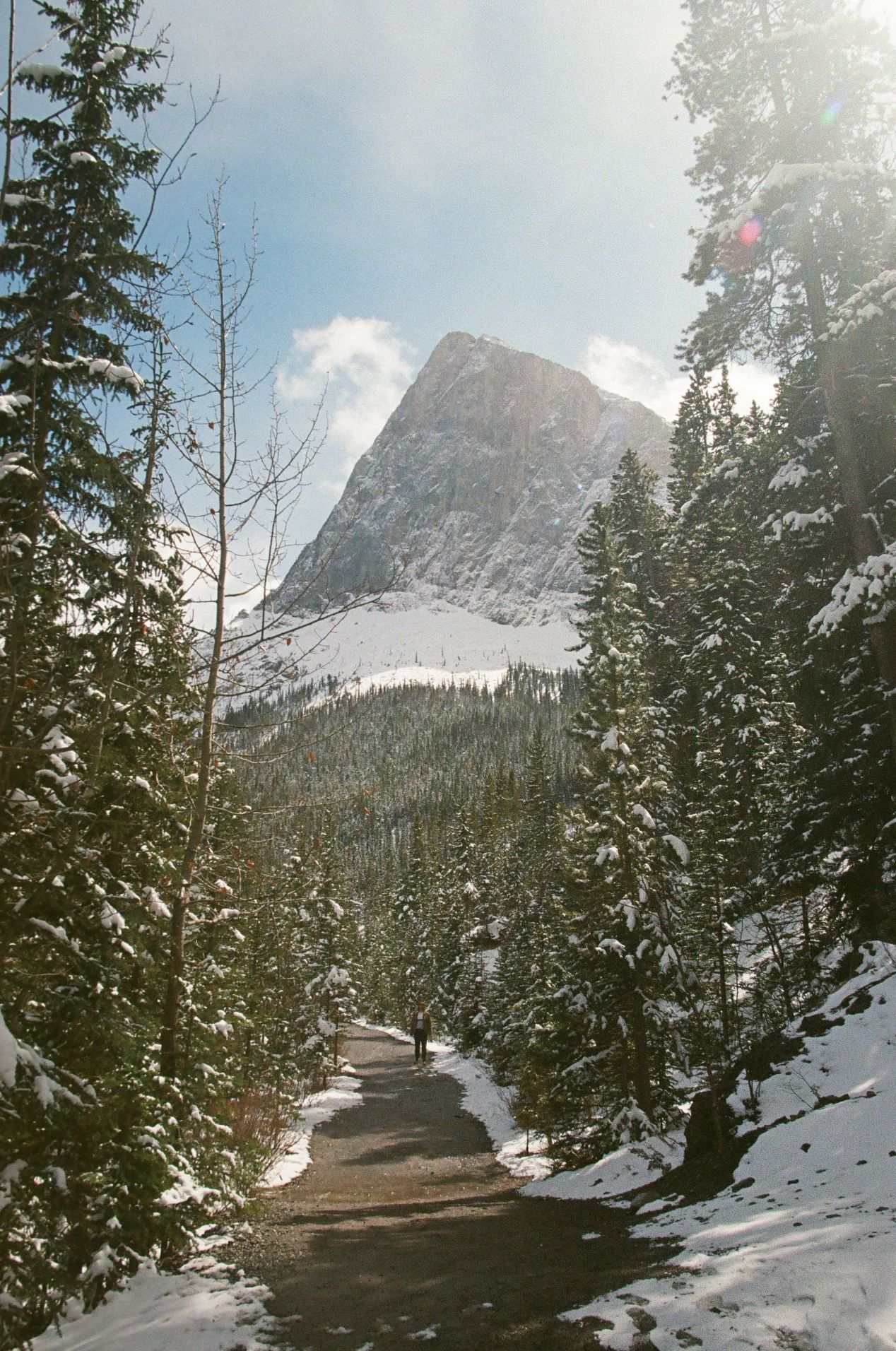 The thirty-minute walk up to Grassi Lakes.