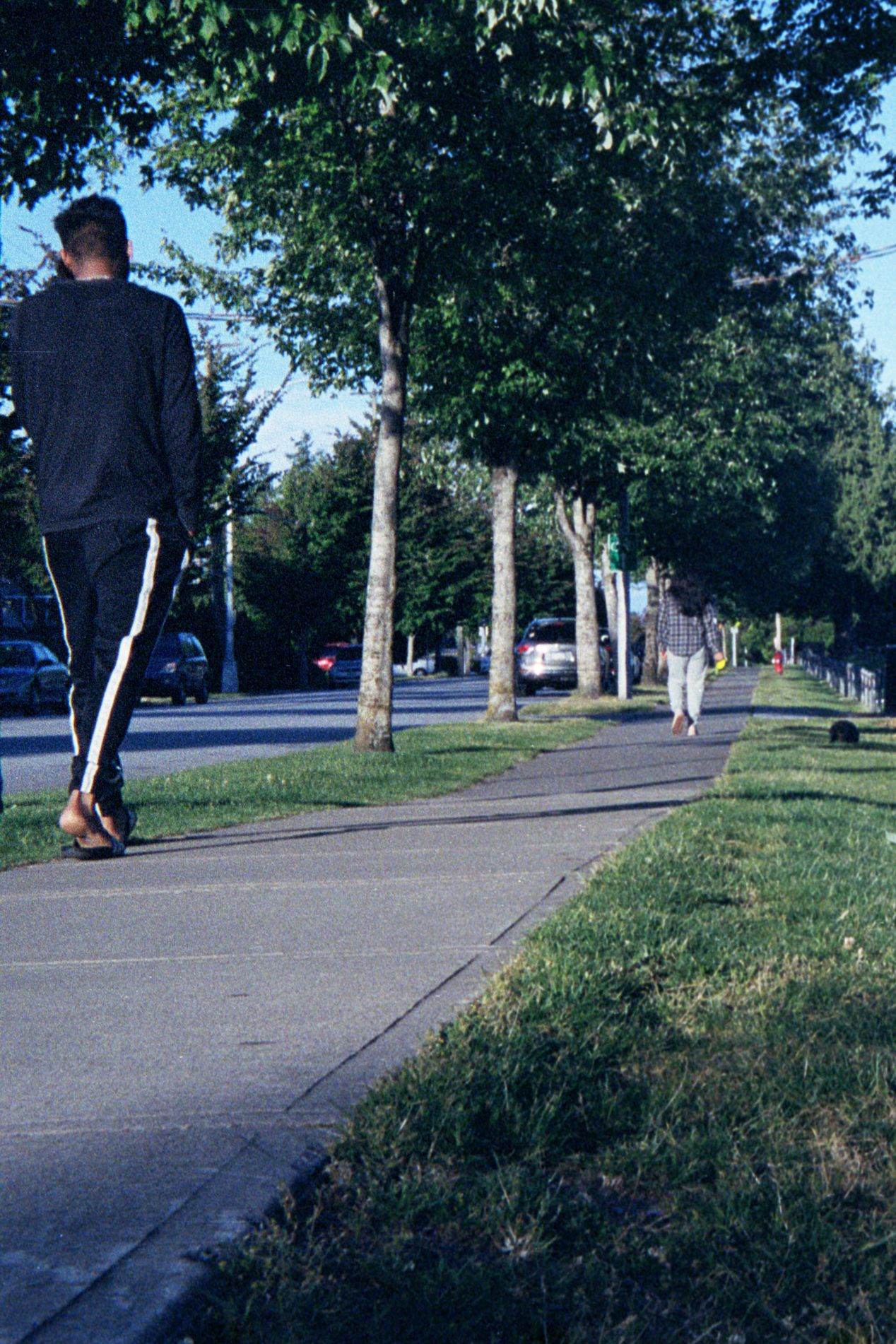 A half-frame crop of a low-angle shot with Bolsey Model C on Portra 400.