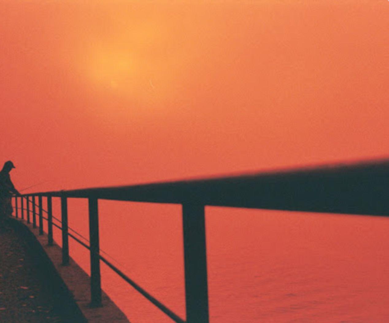 Douto Margin near Ponte da Arrábida. Olympus OM-10, 50mm, Redscale film.