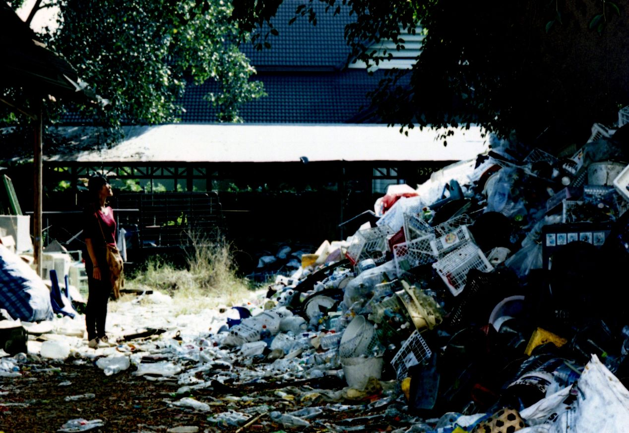 Natonrawin, who helped me communicate with the junk yard owner is looking up one of the dozen piles of plastic trash that rests under a giant tree.