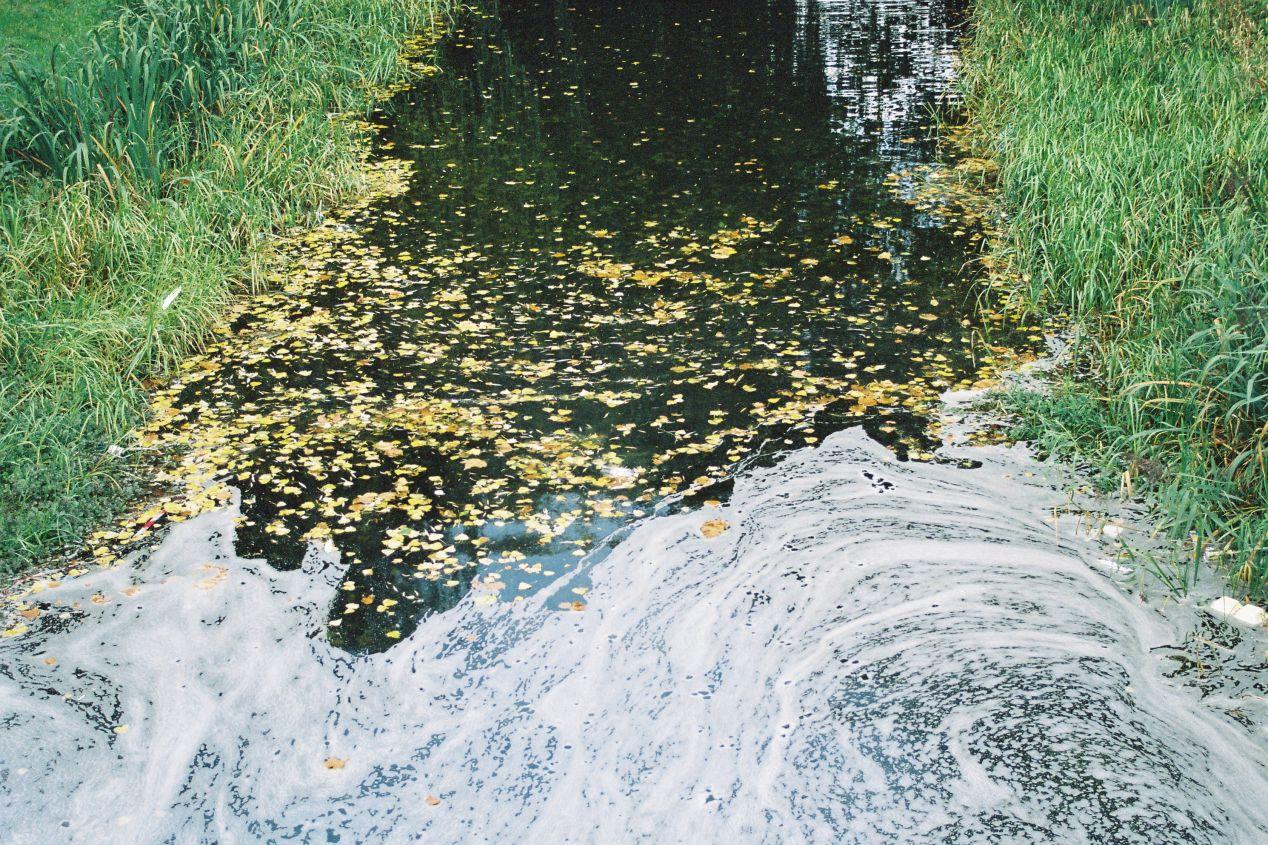 """Water swirls at Grand Canal."" Shot on expired Kodak Gold 200."