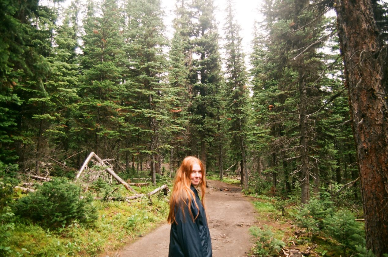 The forest on the Consolation Lakes trail, at Moraine Lake.