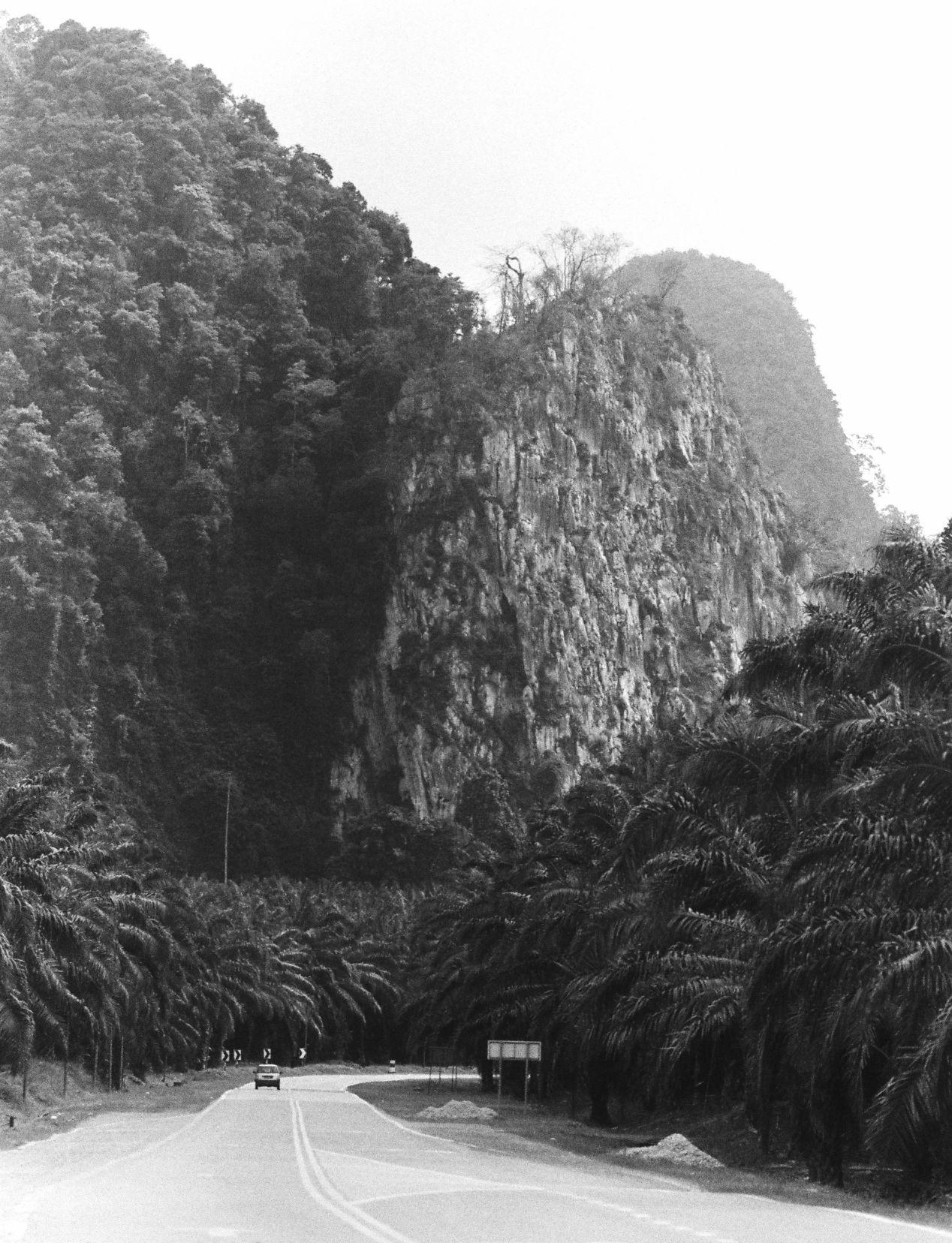 """""""Sang Kancil,"""" shot with Nikon fe2/180mm on Bergger Pancro 400. Gua Musang, Malaysia."""