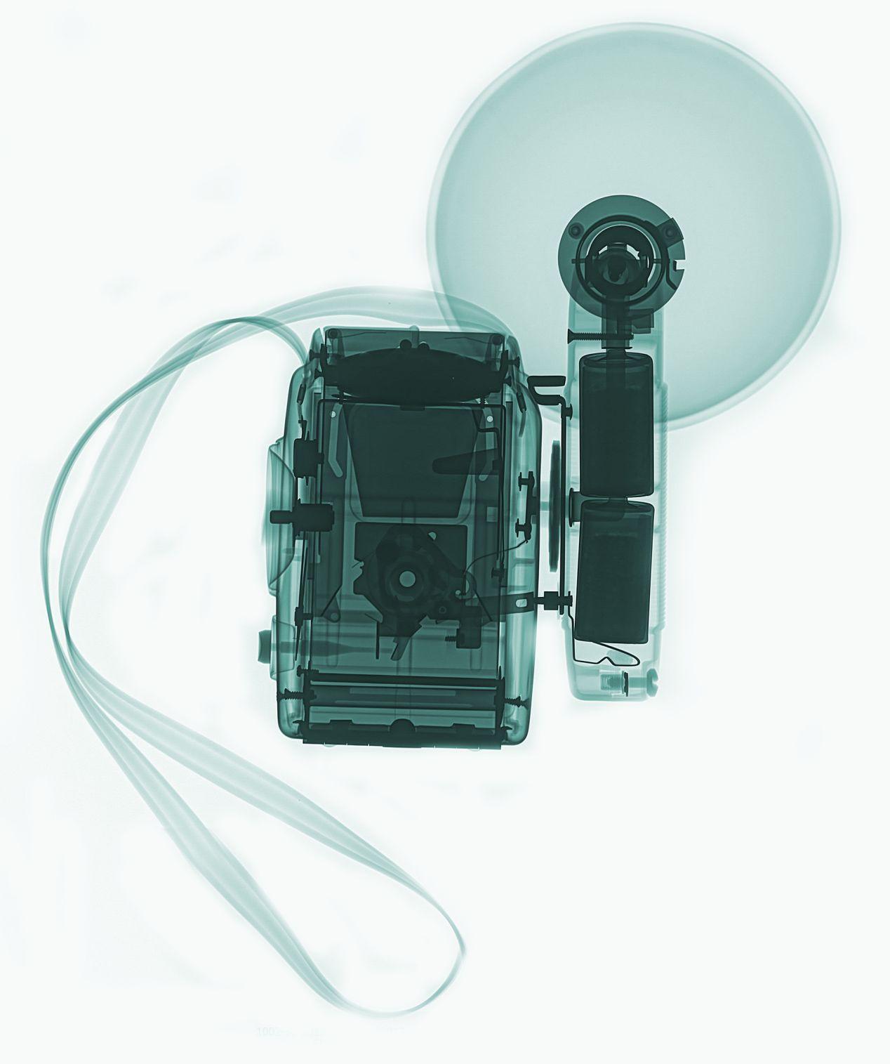 """X-ray Photography"" by Teresa Zgoda, source: Bēhance (CC)."