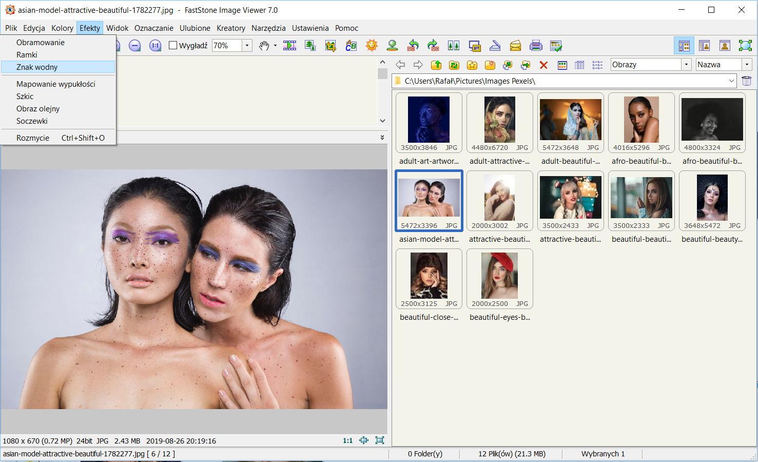 Dodawanie znaku wodnego w programie FastStone Image Viewer - Menu Efekty