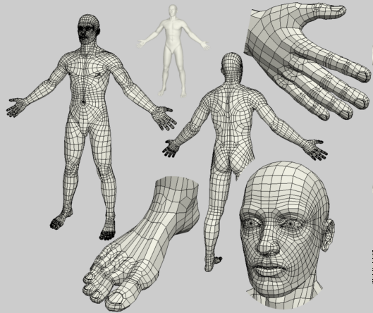 Male Body – Base Mesh