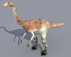 Gallimimus 3d model