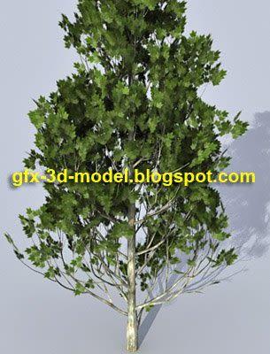 Realistic Tree model