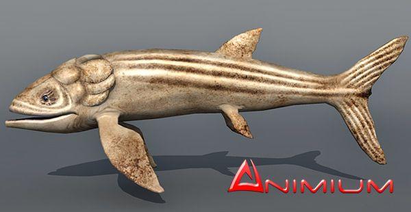 Leedsichthys 3d model