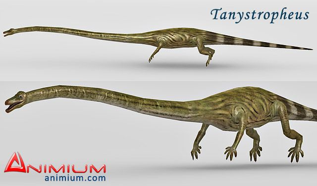 Tanystropheus 3d model
