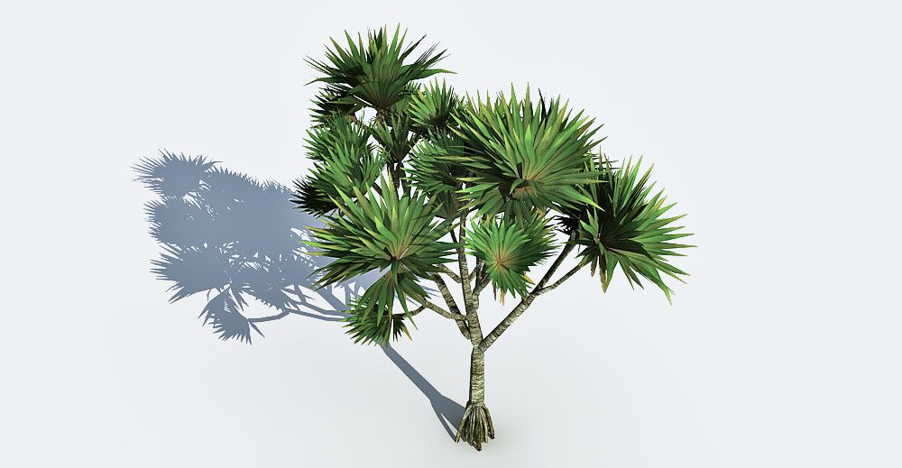 Screw Palm 3d model
