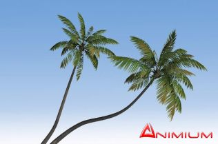 Banyan Tree 3d model – Animium 3D Models