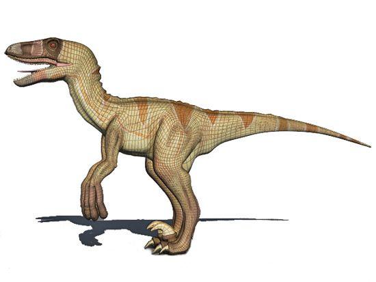 free dromaeosaurus 3d model