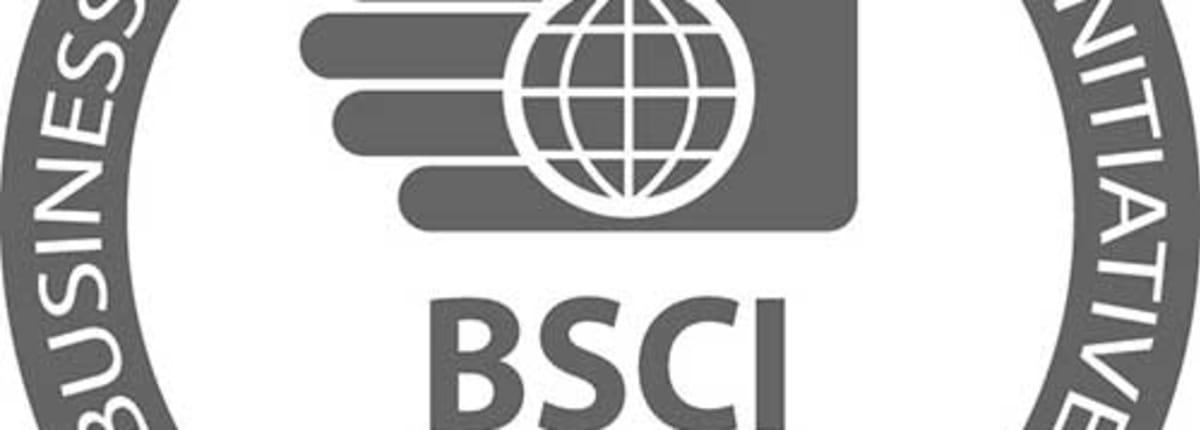 Bsci-logo-Participant-of-BSCI 500x500 web