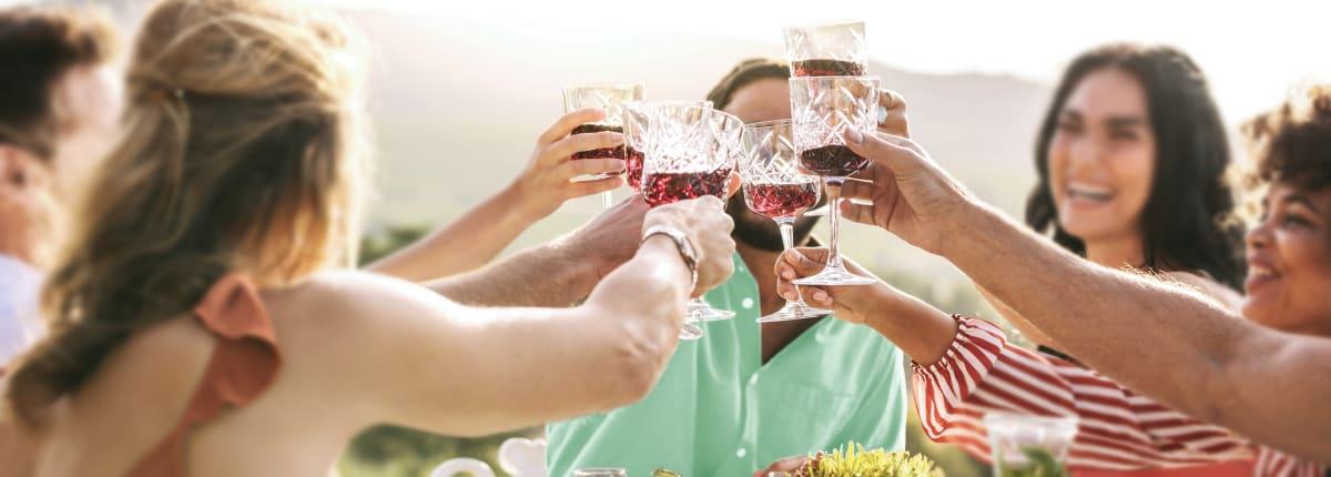Anora - News hero image - people toasting with wine glasses