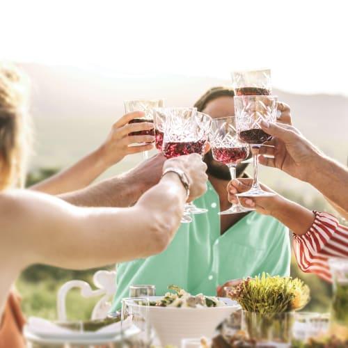 Anora - brand image - people toasting
