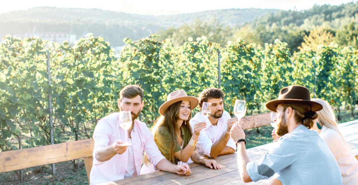 Anora - Investors hero image -  people in vineyard