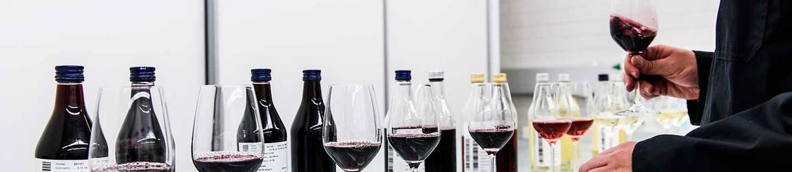 Analyzing wines and wine glasses in Altia Rajamäki Beverage Plant