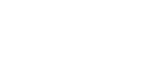 Blossa Glögg type white logo