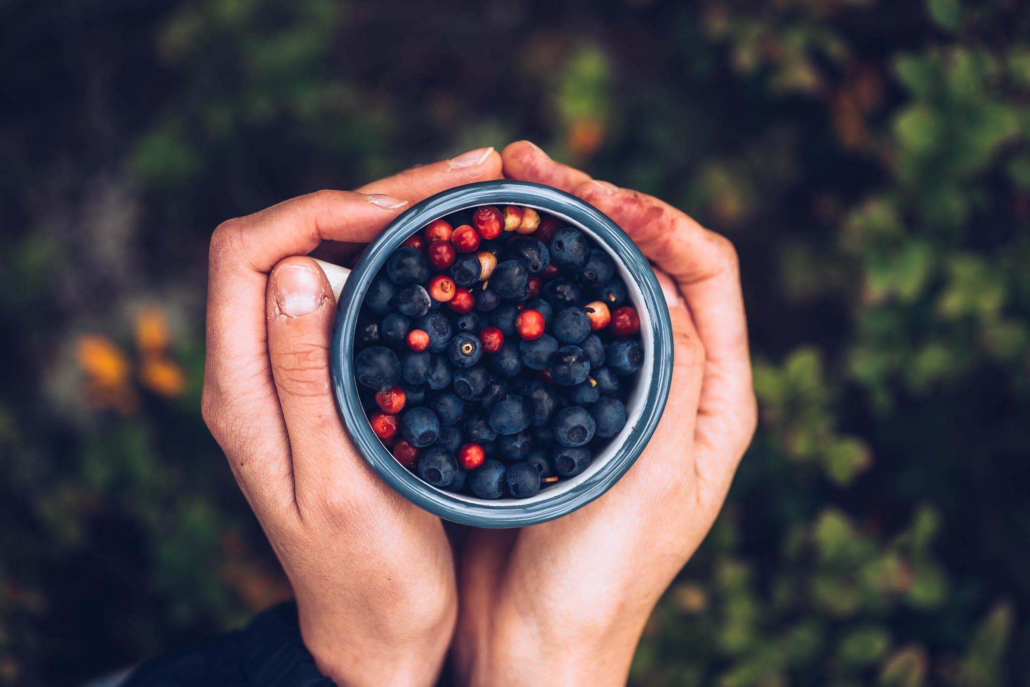 Hände, die Beeren in einer Tasse halten