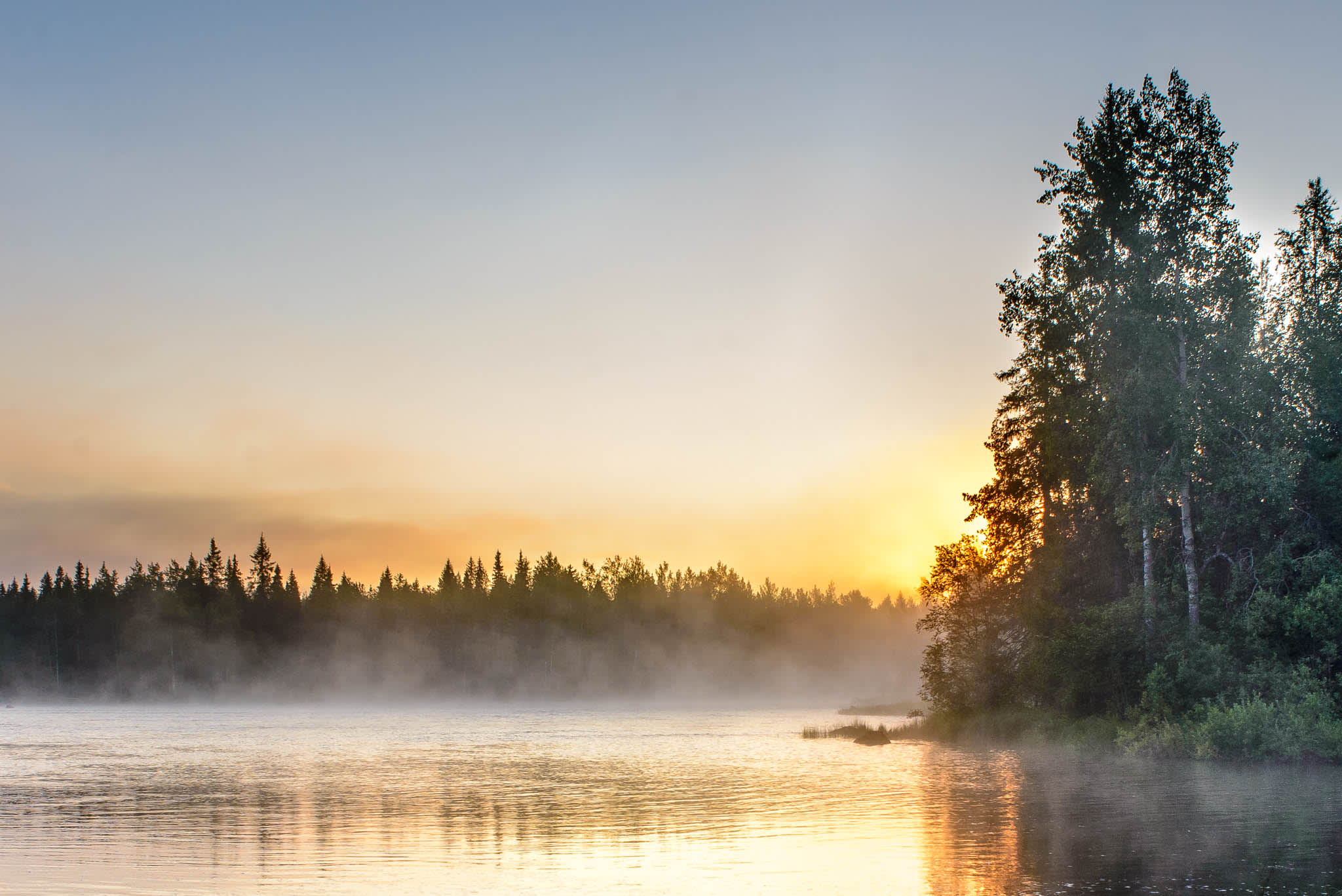 Nordic lake view with fog