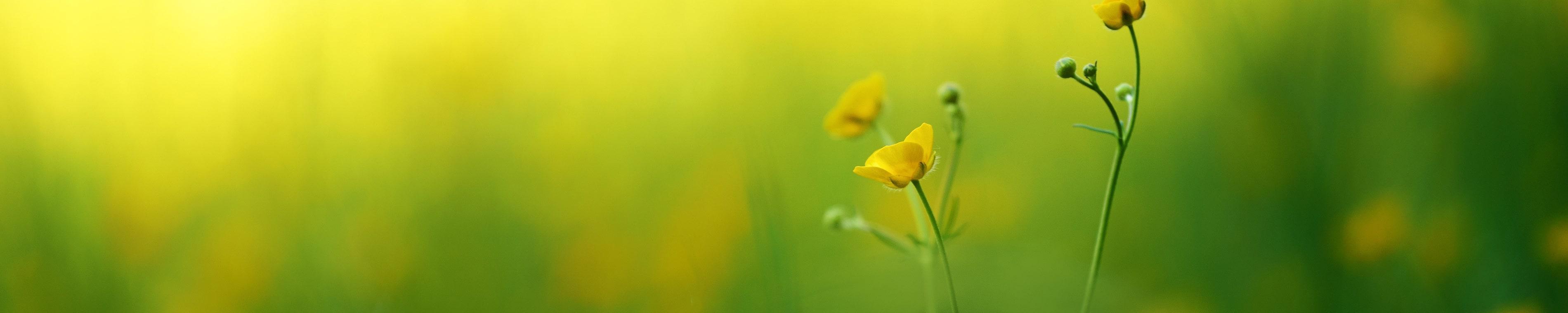 Naturet lämmönsiirtoneste on turvallinen sekä käyttäjälleen että ympäristölle