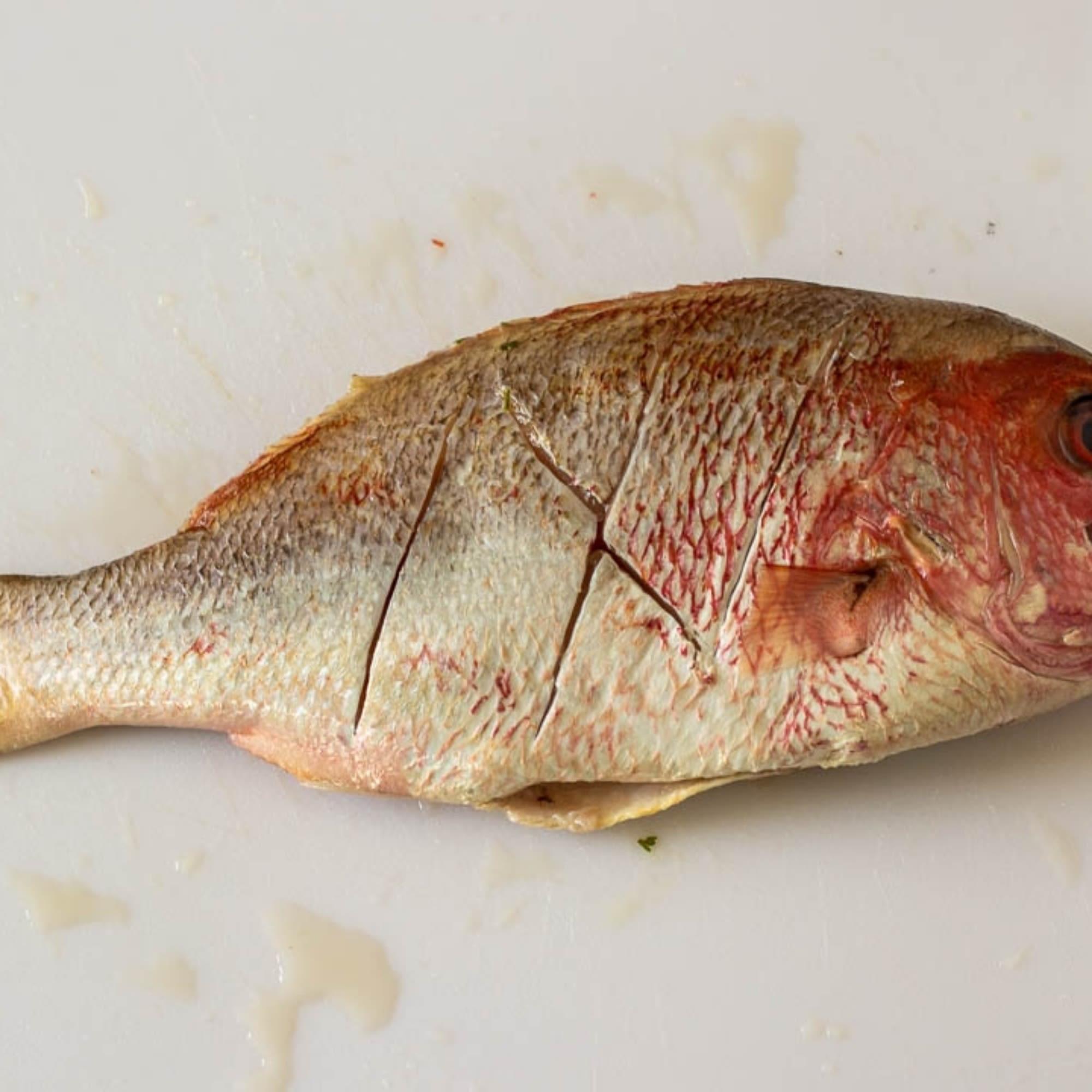 Score Fish