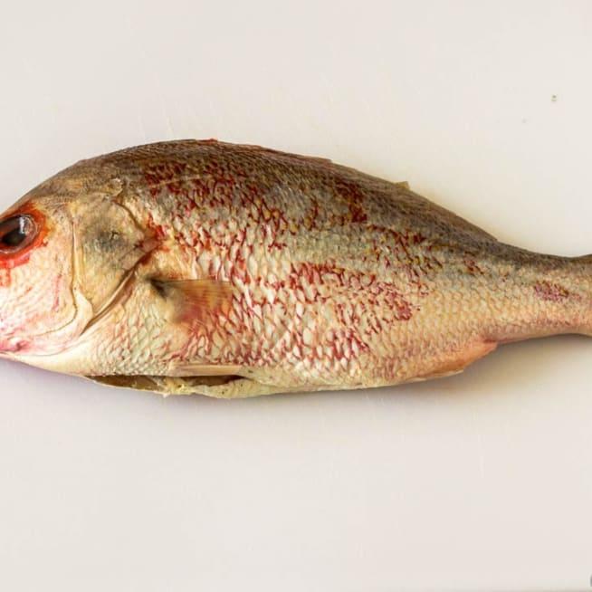 Prepare Fish
