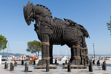 Troy Tour from Istanbul Picture