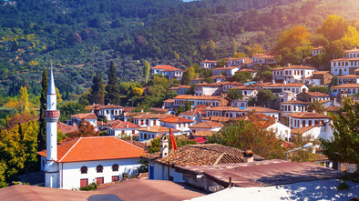Ephesus & Sirince Village Tour Picture