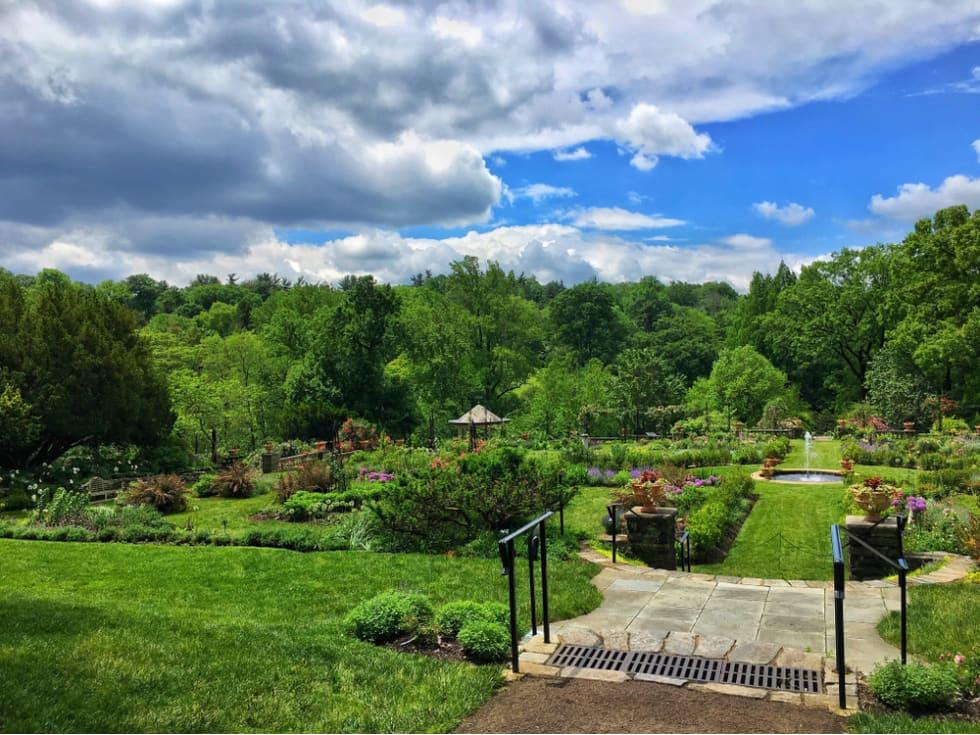 Chestnut Hill Park