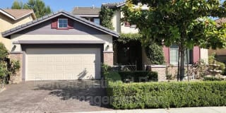29236 Meandering Circle Photo Gallery 1
