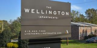 Wellington Photo Gallery 1