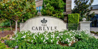 The Carlyle Photo Gallery 1