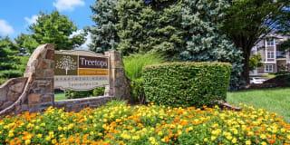 TreeTops At Chester Hollow Photo Gallery 1