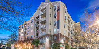 Rosslyn Heights Photo Gallery 1