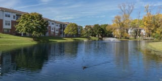Ponds at Georgetown Photo Gallery 1
