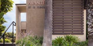 Elán Avante Apartment Homes Photo Gallery 1