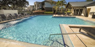 Palms of Clearwater Photo Gallery 1