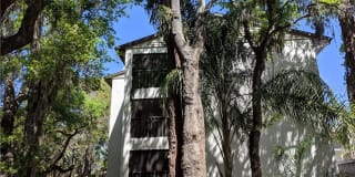 2748 ORCHID OAKS DRIVE Photo Gallery 1